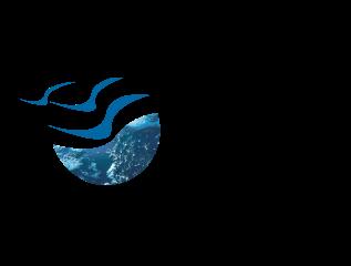 Client's Logo
